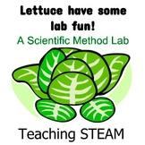 Lettuce Have Some Lab Fun!- A Scientific Method Lab