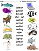 Compound Words - Word Building with Compound Words (OG)