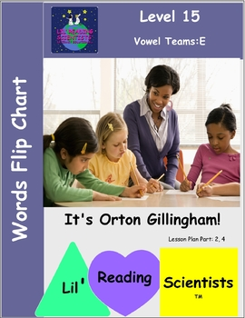 Vowel Teams - Words Flip Chart (Spellings for Long E) (OG)