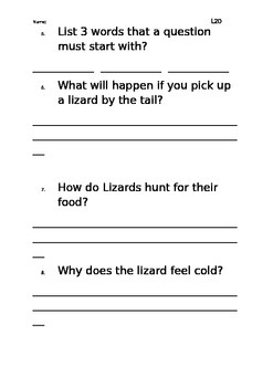 Level 20 text: Lizzie's Lizard worksheet