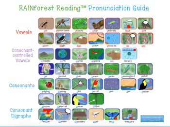 Level 4: The Understory Level of the RAINforest Reading and Spelling Program