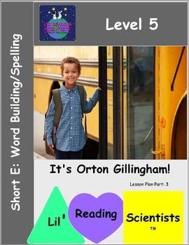Level 5: Short Vowel E (CVC) - Word Building and Spelling kit