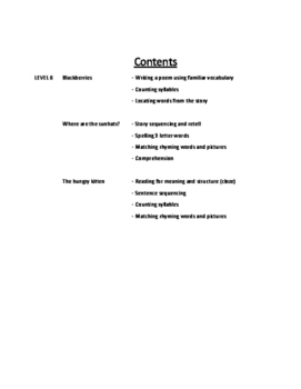 Level 6 Guided Reading Activities for PM Readers