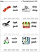 Level 8: Digraphs (CVCC) - Word Building/Spelling Kit