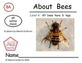 Level A: Bee Nonfiction Repeating Pattern Book #8