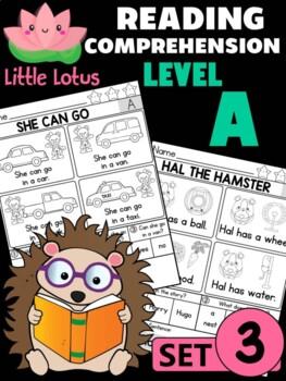 Level A Reading Comprehension Passages & Questions - SET 3