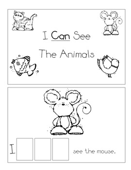 Level A Sight Word Reader-Can