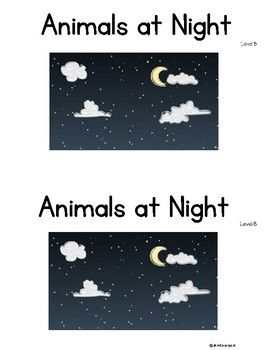 Animals at Night Level B Guided Reading book SCI Integration