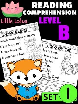 Level B Reading Comprehension Passages & Questions - SET 1
