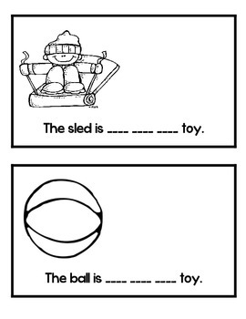 Level B Sight Word Reader-His
