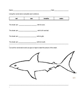 Level C-The Baby Shark Guided Reading Lesson