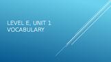 Level E Unit 1 Sadlier Vocabulary Review Activity--Creativ