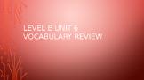 Level E Unit 6 Sadlier Vocabulary Review Activity--Creativ