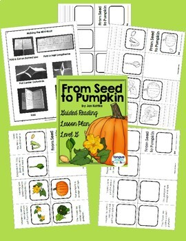 Level G Guided Reading Lesson Plans - Growing Bundle