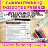 Reading Comprehension Passages and Questions 2nd Grade FREEBIE