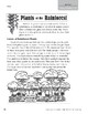 Level N: Plants of the Rainforest (Reading Informational Text)
