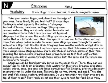 Level N Reading Comprehension Passages