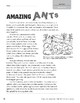 Level T: Amazing Ants (Reading Informational Text)