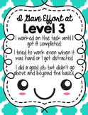 Level of Effort Posters and Rubric