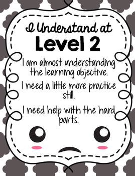 Level of Understanding Posters and Rubric
