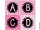 Leveled Library Labels - Pink