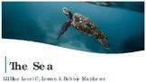 Leveled Liiteracy Intervention LLI Blue Level C Lesson 3 The Sea