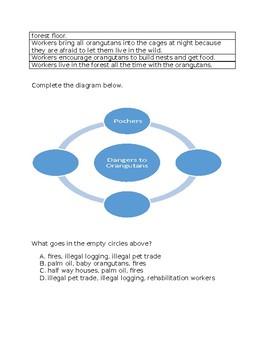 Leveled Literacy Intervention-Gold Level R- FREE SAMPLE