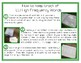 Leveled Literacy Intervention GREEN: High Frequency Words Incentive Routine
