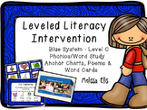 Leveled Literacy Intervention (LLI): Blue Level C: Anchor Charts & Word Cards