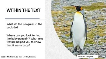 Leveled Literacy Intervention LLI Blue Level C, Lesson 7, All About Penguins