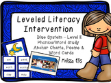 Leveled Literacy Intervention (LLI): Blue Level E: Anchor Charts & Word Cards