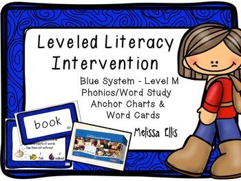 Leveled Literacy Intervention (LLI): Blue Level M: Anchor