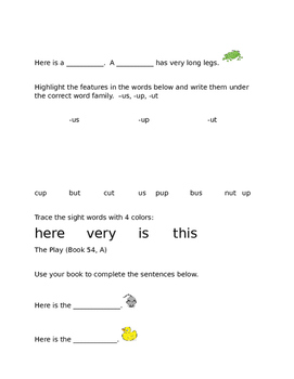 Leveled Literacy Intervention- Orange Level C & 21 comprehension pgs