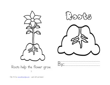 Leveled Readers: Plant Life Cycle Unit - Roots