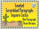 Saguaro Cactus: Leveled Scrambled Paragraph {One Paragraph, Three Versions}