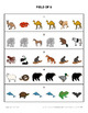 Leveled Spatial Directions Task Cards - Set 2
