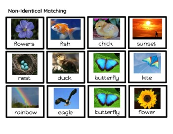 Leveled Spring Adapted Vocabulary Book