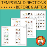 Leveled Temporal Directions: Before/After