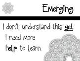 Levels Of Understanding - Mandala Design