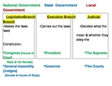 Levels and Branches of Government Poster/Chart