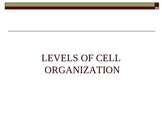 Levels of Cell Organization