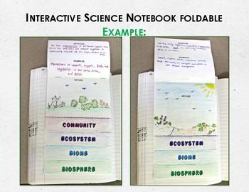 Levels of Ecological Organization ISN