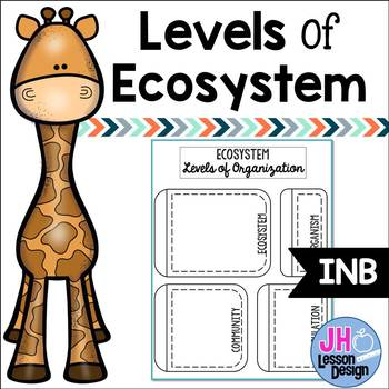 Levels of Ecosystem: Layered Interactive Notebook Activity