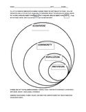 Levels of Ecosystem Organism Graphic Organizer