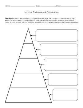 Life Science: Levels of Environmental Organization Worksheet