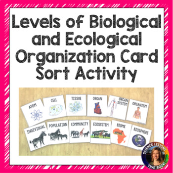 Levels Of Organization In The Ecosystem Activity Teaching Resources