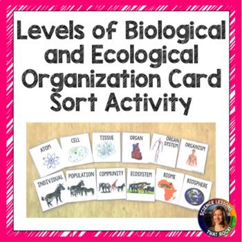 Levels of Organization Card Sort Activity