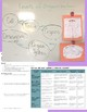 Levels of Organization Activity | NGSS | Life Science