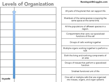 Levels of Organization Interactive Notebook Page