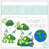 Biology Clip Art - Levels of Organization - Organism to Biosphere